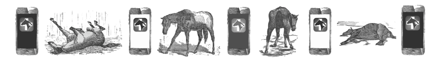 Horse & Phones Panorama BW 2