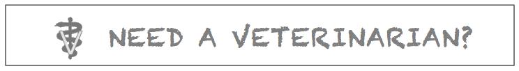 NeedVet55