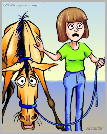 Horse & Owner 7