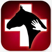 horsesidevetguide.com