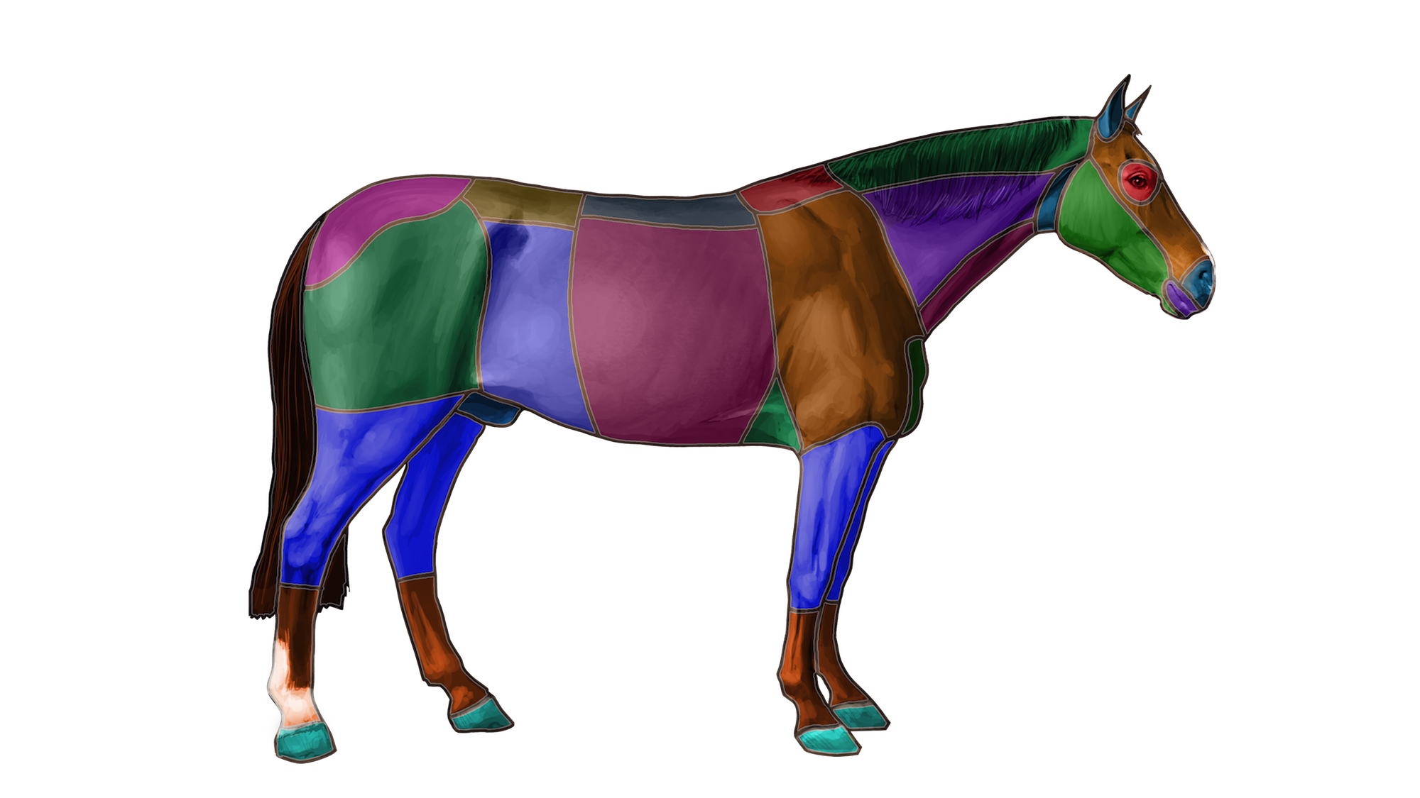 You can search our website for information using our equine models. This is just one of many features we will add to the mobile app in the future.