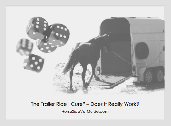 Horse loading onto a trailer because of colic